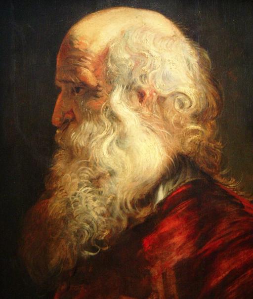 Estudio de la cabeza de un anciano, de Rubens.